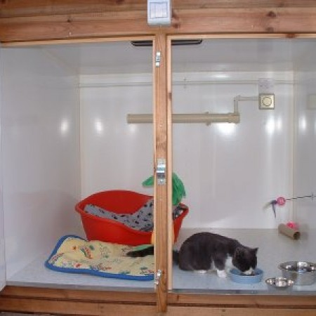 Clean Room at Toton Cattery